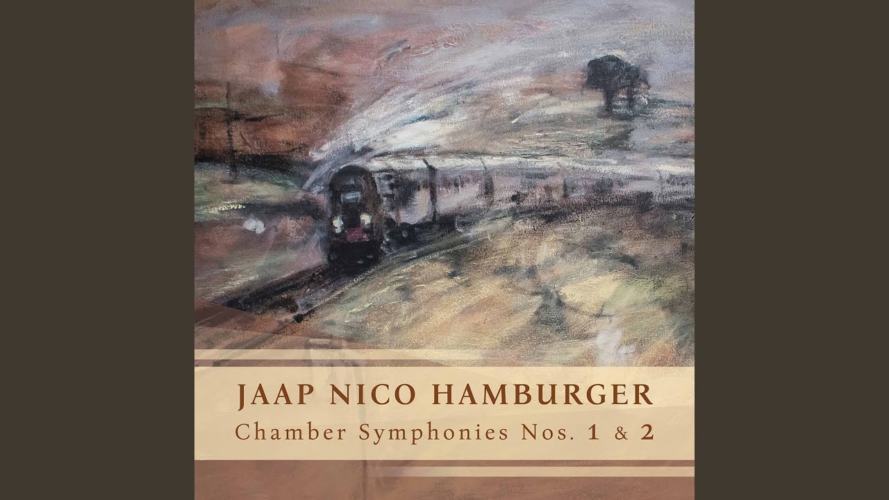 Jaap Nico Hamburger