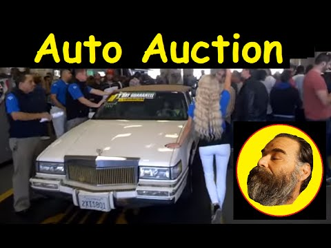 Cost of Auto Auction Cars Wholesale Car Auctions Bought 2 Live #3