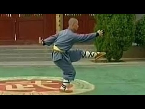 Shaolin 7-star kung fu (qi xing quan)