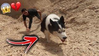 صعدنا اعلى قمة جبل مع اذكى كلب وتوهقنا بسبب !! 💔😱