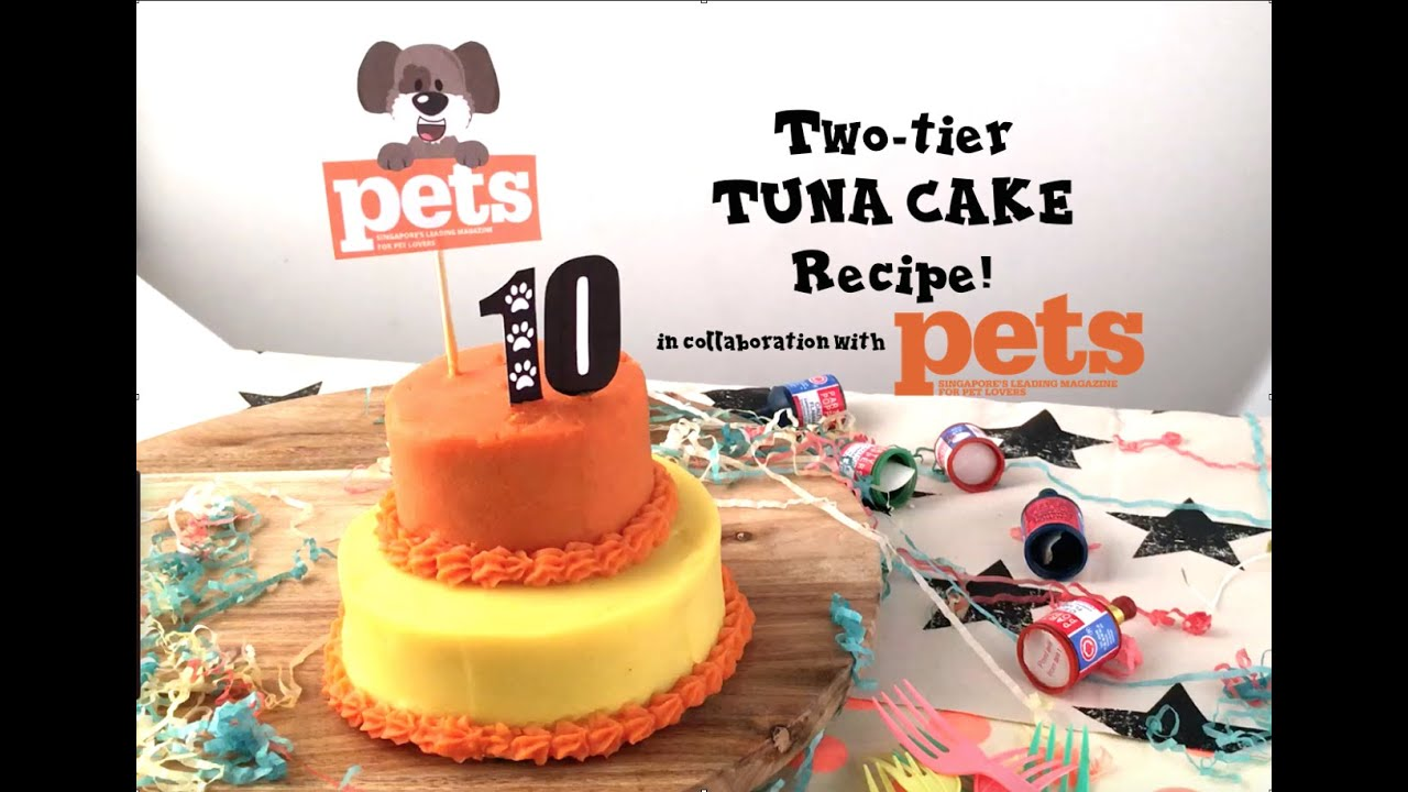 TUNA BIRTHDAY CAKE RECIPE FOR DOGS YouTube