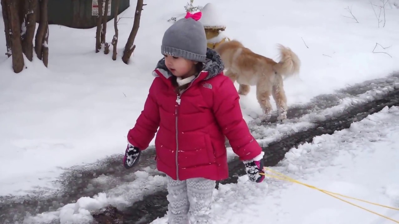 Snow Day In Charlotte Nc 172017 Youtube