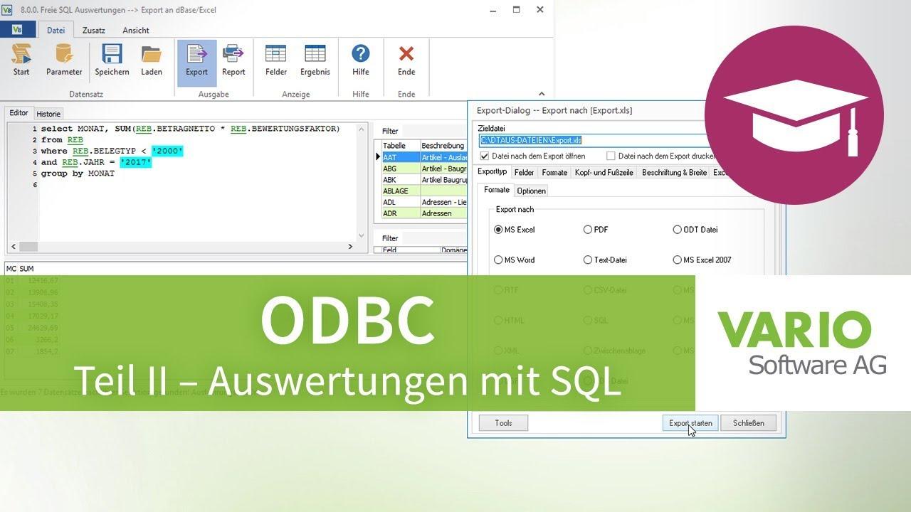 Odbc Datenbankzugriff Und Auswertungen Mit Sql In Excel Vario 8 Warenwirtschaft Tutorial