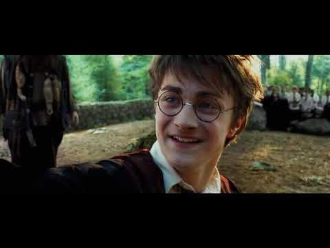 Harry Potter lezione ippogrifo
