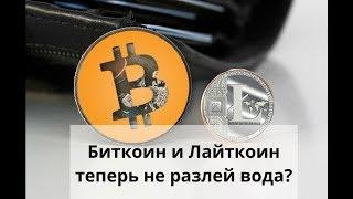 Майнинг дома. Биткоин (Bitcoin) и Лайткоин (Litecoin) теперь не разлей вода?