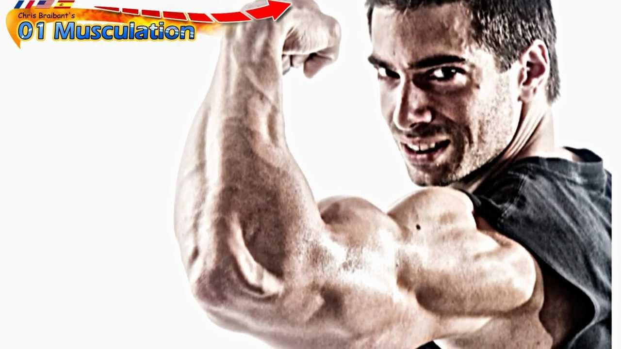 Les Meilleurs Exercices de Musculation des Biceps - YouTube