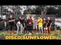 DISCO SUN FLOWER - COCOLENSE FT TORANG KAWANG