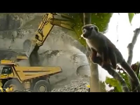 Ecuador: Communities face uneven battle to protect environment from mega-mining projects