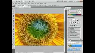 Системные требования для Adobe Photoshop CS5