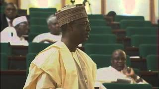 Minister Of Agriculture And Rural Development Speaks On Rice Production In Nigeria