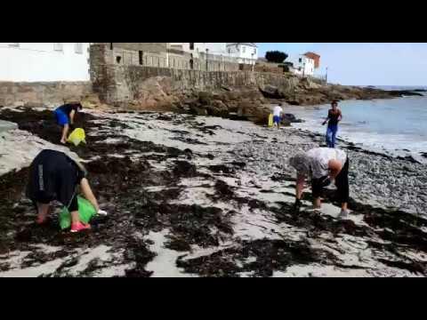 Recogen 'basuraleza' en el arenal de A Caosa, San Cibrao