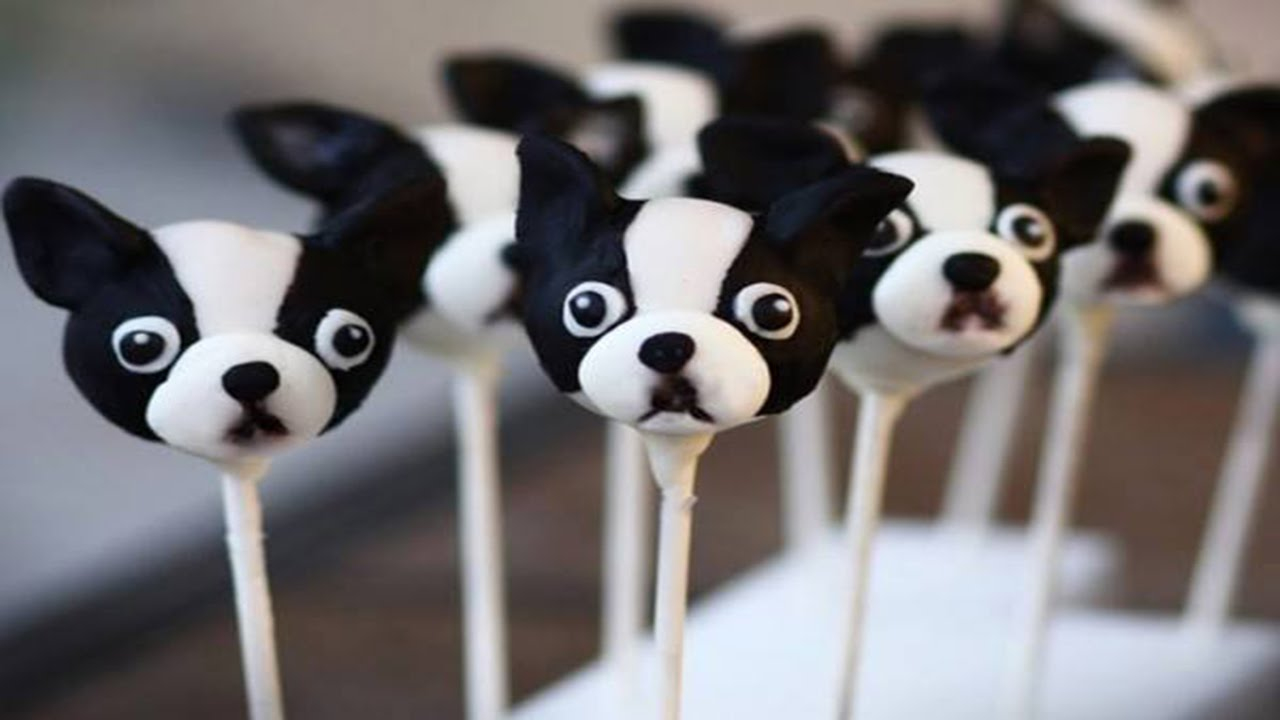 How To Make Dog Shaped Cake Pops