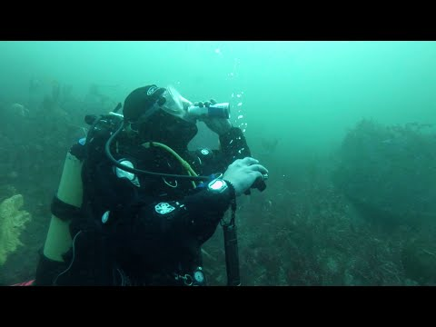 2015 Irish Scuba Diving Intervarsities - Co. Galway [HD]