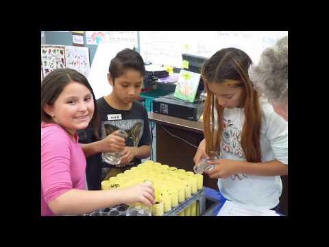 Cambria Grammar School Seed Bank Project