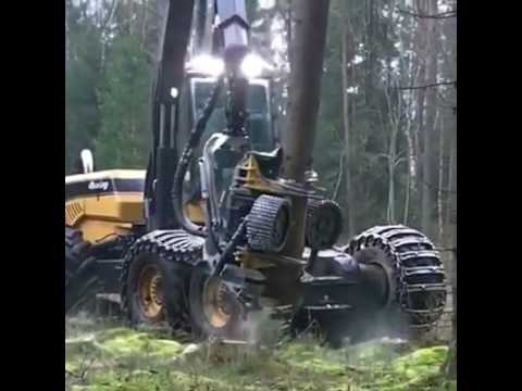 Wonders of technology- a log cutter executing its job perfectly.