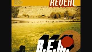 R.E.M - I've been High