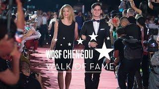 The Walk of Fame | 2017 Chengdu Opening Ceremony | DanceSport Total