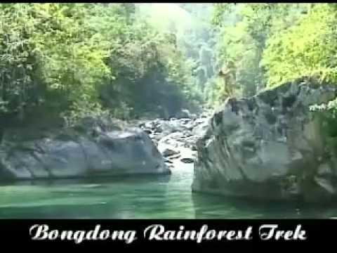 bongdong rainforest tour puerto galera mindoro philippines