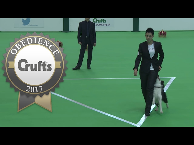 Obedience Championship - Bitches - Part 9 | Crufts 2017