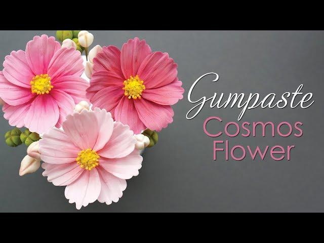 How to make a Gumpaste Cosmos Flower Tutorial
