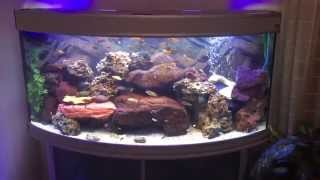 Ben Video Aquarium Viyoutubecom