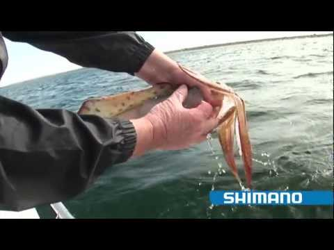 "Thumbnail: How to catch Squid ""Part 1"" - SHIMANO FISHING"