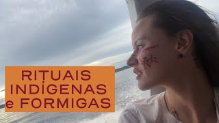 ONDE IR EM MANAUS| AMAZONIA| FAROFA DE FORMIGA| BOTO| Encontro das Águas| AMAZON