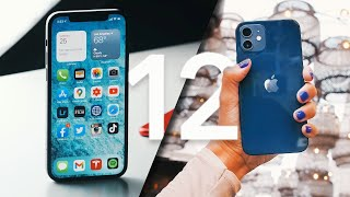 the iPhone 12 you should buy (Not PRO)
