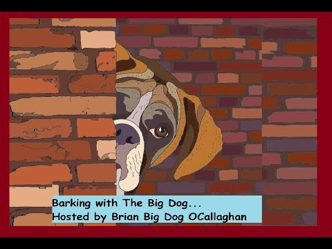 Interview with Vanessa Collier - BARKING WITH THE BIG DOG!