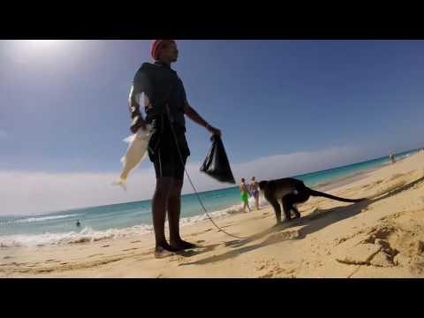 Cape Verde, Boa Vista, Riu Touareg (Santa Monica Beach)