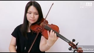 Billie Eilish - when the party's over(Violin Cover)