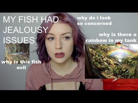 DON'T BUY MY EVIL FISH. (It Took Me 5 Months to Film This)