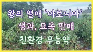 """[왕의열매 """"…"""