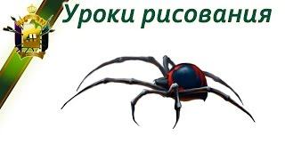 Учимся рисовать паука (как научиться рисовать каракурта) Learn to draw a spider(