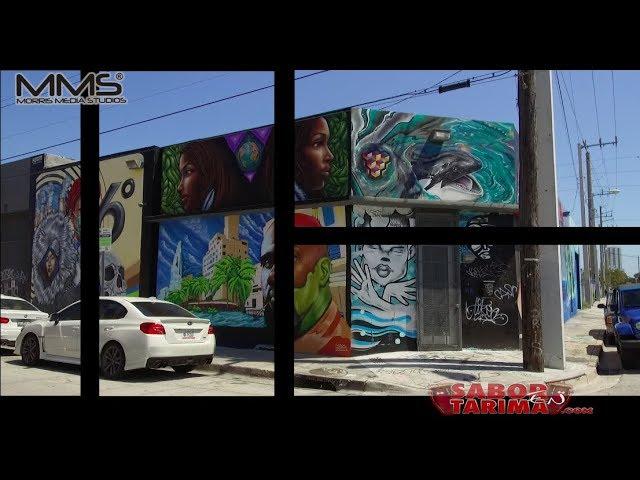 Wynwood Doors - Miami Arts charter school