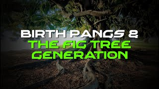 The Christian Contrarian Ep  22 Birth Pangs And The Fig Tree Generation