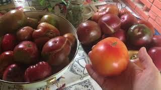 Консервированные томаты на зиму / мой любимый рецепт