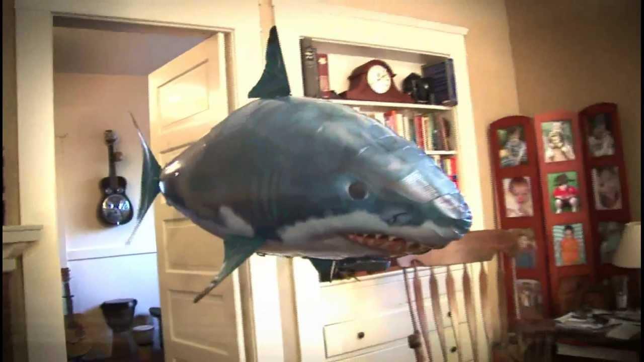 Купить подарок летающие рыбки air swimmers в нижнем новгороде. Продажа. Летающие по воздуху, наполненные гелием рыбки на радиоуправлении по. Летающие акула и рыба-клоун на пульте управления – игрушки 2011.