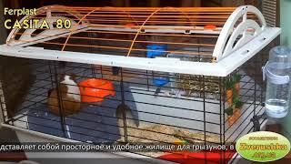 Клетка для морской свинки, хомяка, крысы • Ferplast CASITA 80