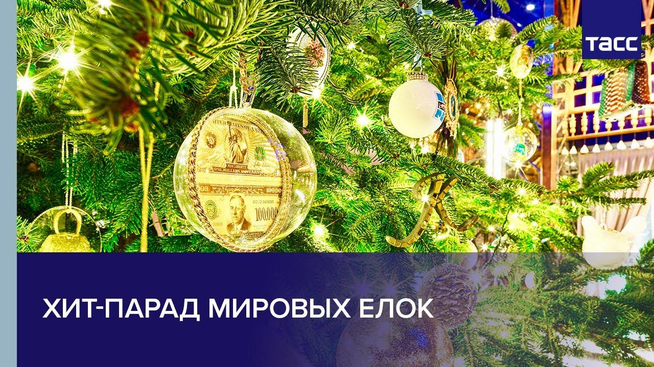 Хит-парад мировых елок