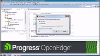 Getting Started with Progress Developer Studio for OpenEdge