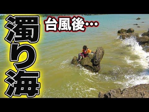 【検証】台風後は魚が爆釣するらしい!?