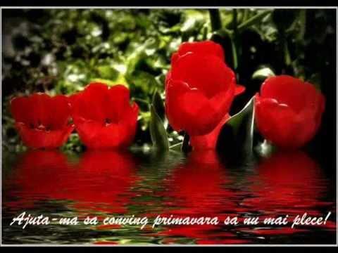 Trandafir de 8 Martie - YouTube