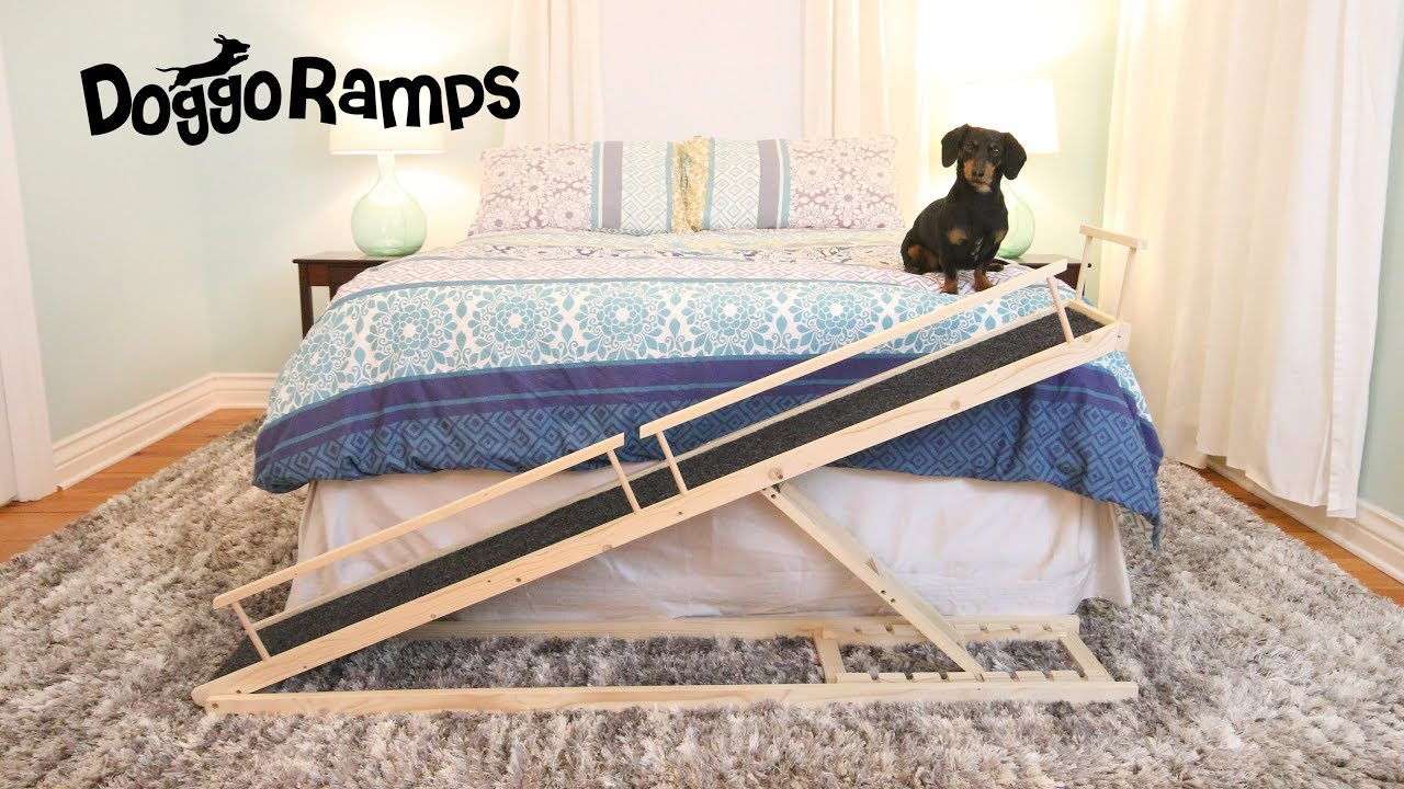 Introducing DoggoRamps - The Small Dog Bed Ramp - YouTube