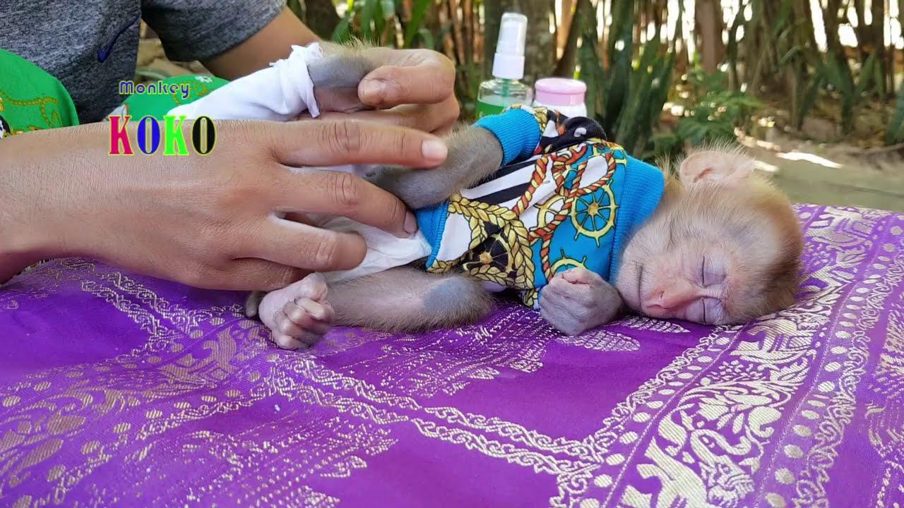 Download Mom Gently Applying Powder And Movement Koko Till Little Poor Baby Koko Fall Asleep