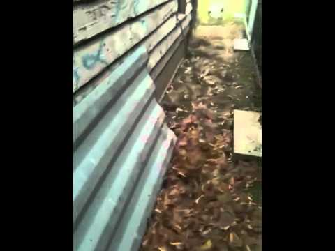 Shipping container shelter barn - YouTube