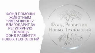 #БлаготворительныйФондЮлииСперанской благодарит за помощь Фонд Развития Новых Технологий #ФРНТ #PZM
