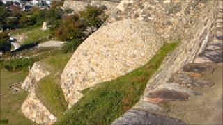 ビーグル犬ビリーと行く 鳥取城 山麓から山上の城跡へ 鳥取城 検索動画 17