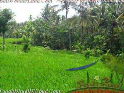 Affordable PROPERTY UBUD BALI LAND FOR SALE TJUB478