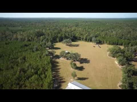 Longbranch Crossing - 2,785 +/- Acres Of Hunting, Ranch And Timber